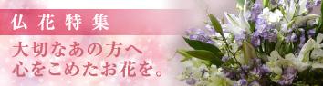 仏花特集 春・夏